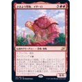 (FOIL)さまよう怪物、イダーロ/Yidaro, Wandering Monster《日本語》【IKO】