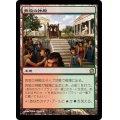 奔放の神殿/Temple of Abandon 《日本語》【THS】