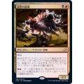 迷宮の猛竜/Labyrinth Raptor《日本語》【IKO】