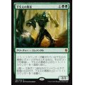 下生えの勇者/Undergrowth Champion 《英語》【BFZ】