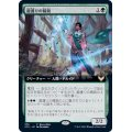 [EX+](FOIL)(フルアート)龍護りの精鋭/Dragonsguard Elite《日本語》【Buy-A-Box Promos(STX)】