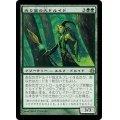 [EX+]光り葉の大ドルイド/Gilt-Leaf Archdruid《日本語》【MOR】