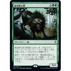 画像1: 意地悪な狼/Wicked Wolf《日本語》【ELD】