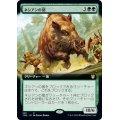 (FOIL)(フルアート)ネシアンの猪/Nessian Boar《英語》【THB】