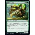 鉄鱗のハイドラ/Ironscale Hydra《日本語》【THB】