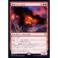 灰のフェニックス/Phoenix of Ash《英語》【THB】