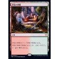 奔放の神殿/Temple of Abandon《日本語》【THB】