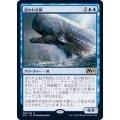 (FOIL)追われる鯨/Pursued Whale《日本語》【M21】