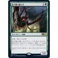(FOIL)胞子網の織り手/Sporeweb Weaver《日本語》【M21】