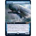 (FOIL)(フルアート)追われる鯨/Pursued Whale《日本語》【M21】