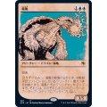 (ショーケース枠)竜亀/Dragon Turtle《日本語》【AFR】