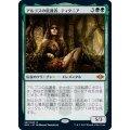 [EX](FOIL)アルゴスの庇護者、ティタニア/Titania, Protector of Argoth《日本語》【MH2】