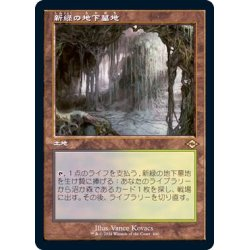 画像1: (FOIL)(旧枠仕様)新緑の地下墓地/Verdant Catacombs《日本語》【MH2】