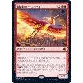 太陽筋のフェニックス/Sunstreak Phoenix《日本語》【MID】