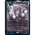 (ショーケース枠)光の勇者、シガルダ/Sigarda, Champion of Light《日本語》【MID】