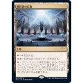 神託者の広間/Hall of Oracles《日本語》【STX】
