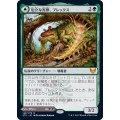 厄介な害獣、ブレックス/Blex, Vexing Pest《日本語》【STX】