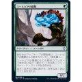 ユートピアの菌類/Utopia Mycon《日本語》【TSR】
