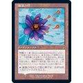 [HPLD](FOIL)睡蓮の花/Lotus Bloom《日本語》【Buy-A-Box Promos(TSR)】