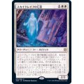 (FOIL)スカイクレイブの亡霊/Skyclave Apparition《日本語》【ZNR】