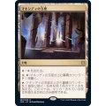 (FOIL)マキンディの玉座/Throne of Makindi《日本語》【ZNR】