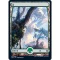 (フルアート)(278)森/Forest《日本語》【ZNR】