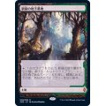 [EX+](フルアート)新緑の地下墓地/Verdant Catacombs《日本語》【ZNE】